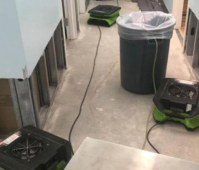 green drying equipment in a hallway