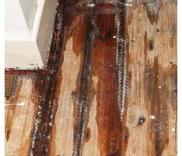 Water Damage Building Materials Versus Water Damage- Which Wins?