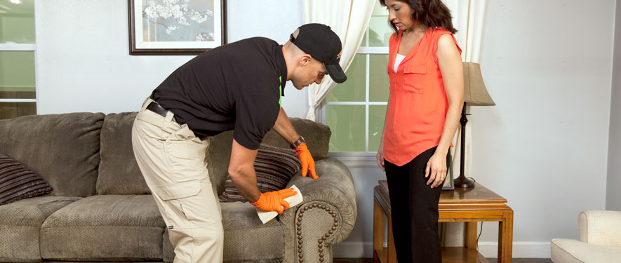 Weymouth, MA carpet upholstery cleaning